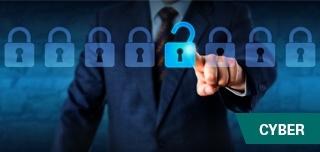 Introducción a los Cyber riesgos y seguridad en la información