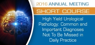 SC51 - High Yield Urological Pathology: Common and Important Diagnoses Not To Be Missed in Daily Practice